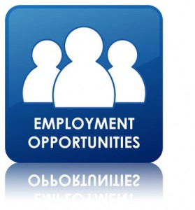 employment opportunities icon