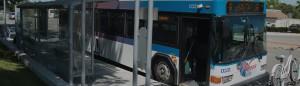 Wheels bus at bus stop