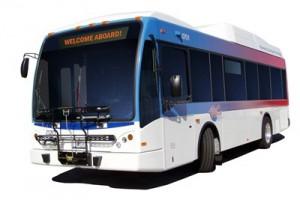 Wheels Bus