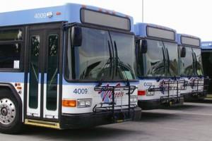 Wheels bus fleet