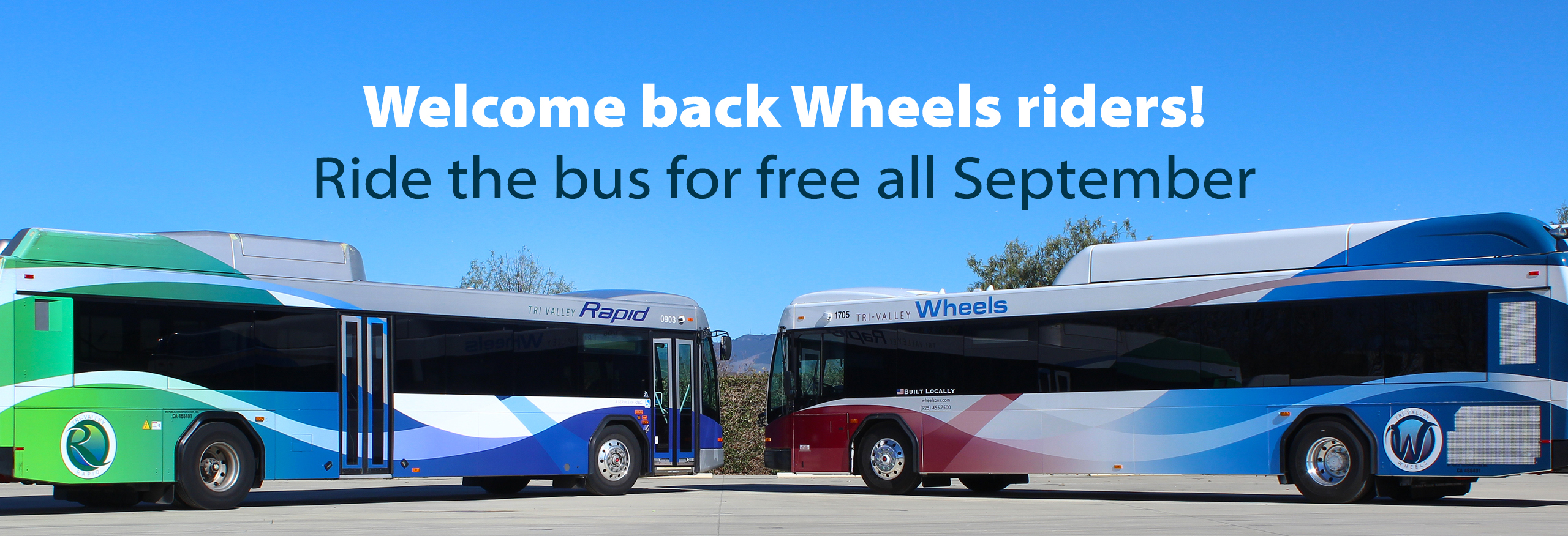 Wheels Rapid Bus Image